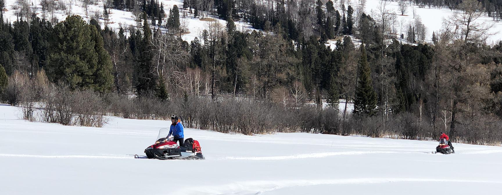 Снегоходные экскурсии